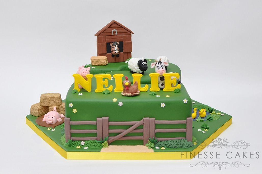 number 2 farm animal themed birthday cake boy girl essex cake maker
